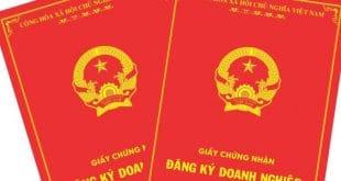 Dịch vụ thành lập doanh nghiệp nhanh nhất tại Nha Trang